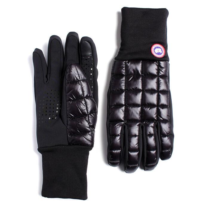 Men's Northern Liner Glove