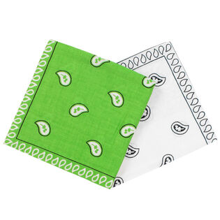 Assorted Bandana (2 Pack)