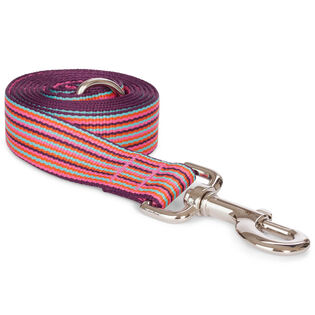 Mini Stripe Lead