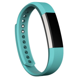 Alta™ Fitness Wristband (Large)