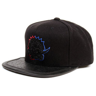 Men's Toronto Raptors Sneaker Pop Snapback Hat