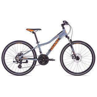 Boys' XTC 24 Disc Bike [2019]
