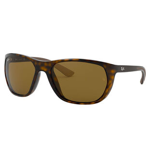RB4307 Sunglasses
