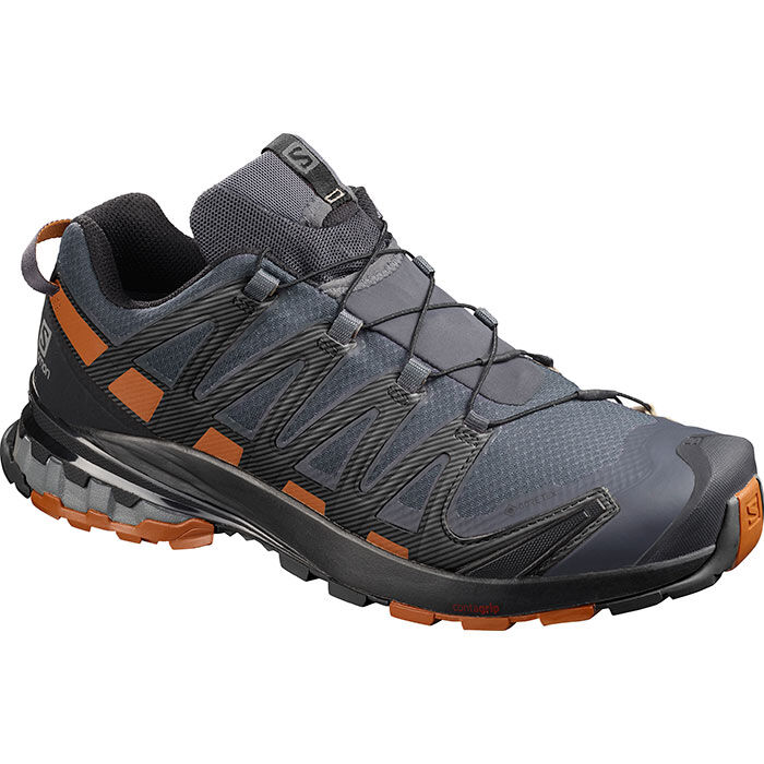Men's XA Pro 3D V8 GTX® Hiking Shoe (Wide)