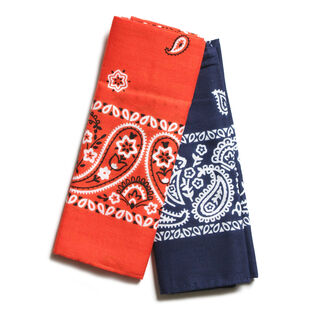 Unisex Assorted Bandana (2 Pack)