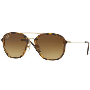 RB4273 Sunglasses