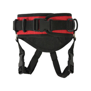 Ultimate Kid's Harness