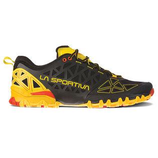 Men's Bushido II Hiking Shoe