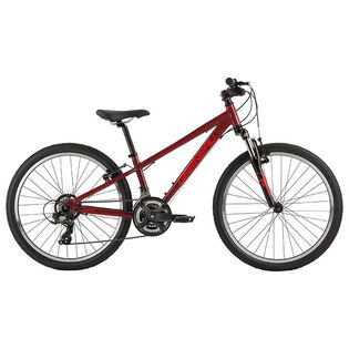 Boys' Trust 241 Bike [2020]