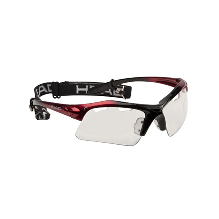 Lunettes protectrices Raptor [2014]