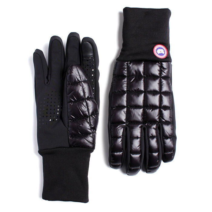 Men's Northern Liner Glove