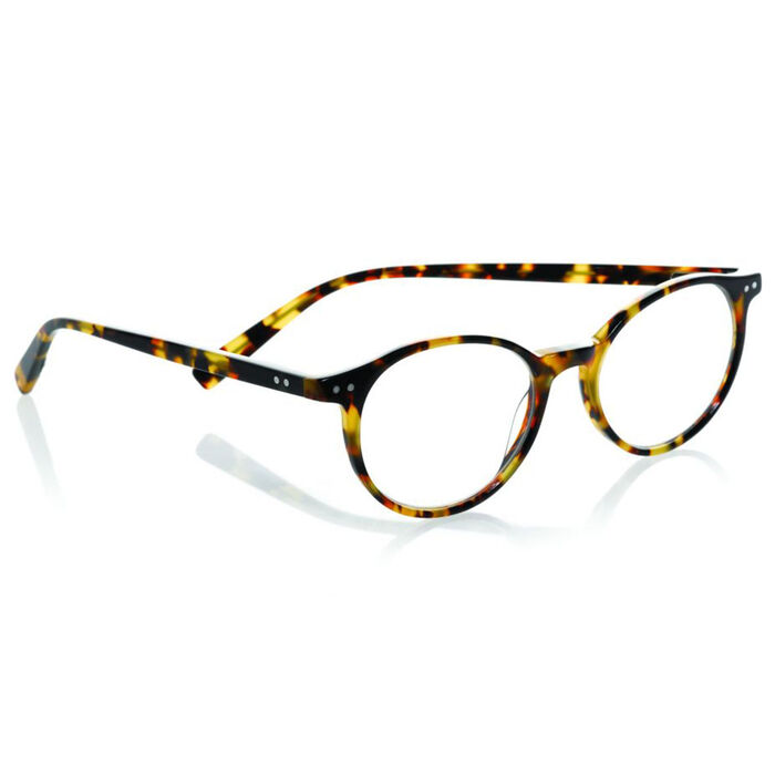 Case Closed Reading Glasses