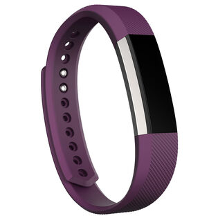 Alta™ Fitness Wristband (Small)