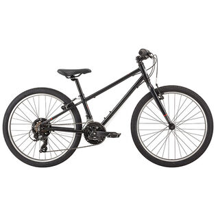 Boys' Petit Louis 242 Bike [2019]