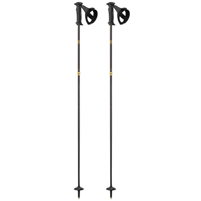 Element Carbon Ergo S3 Ski Pole [2020]