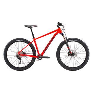 Cujo 1 Bike [2019]