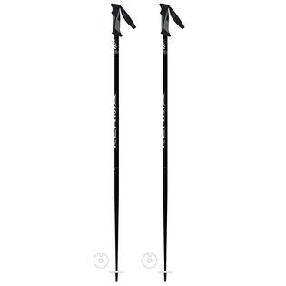 Vector Ski Pole [2020]