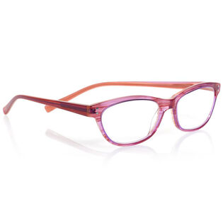 Stew Zoo Reading Glasses