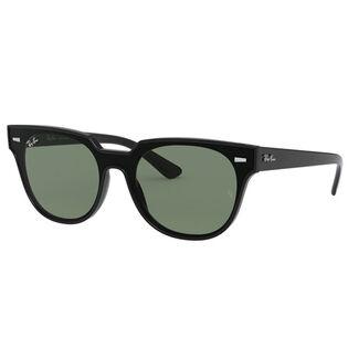 Blaze Meteor Sunglasses