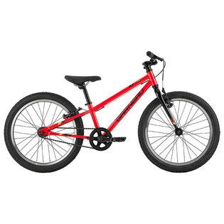 Boys' Rapido 203 Bike [2020]