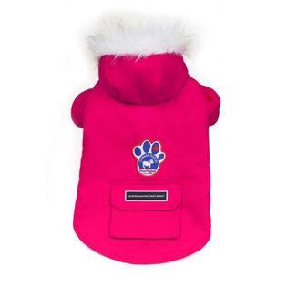 Winter Wilderness Dog Jacket (Size 16)